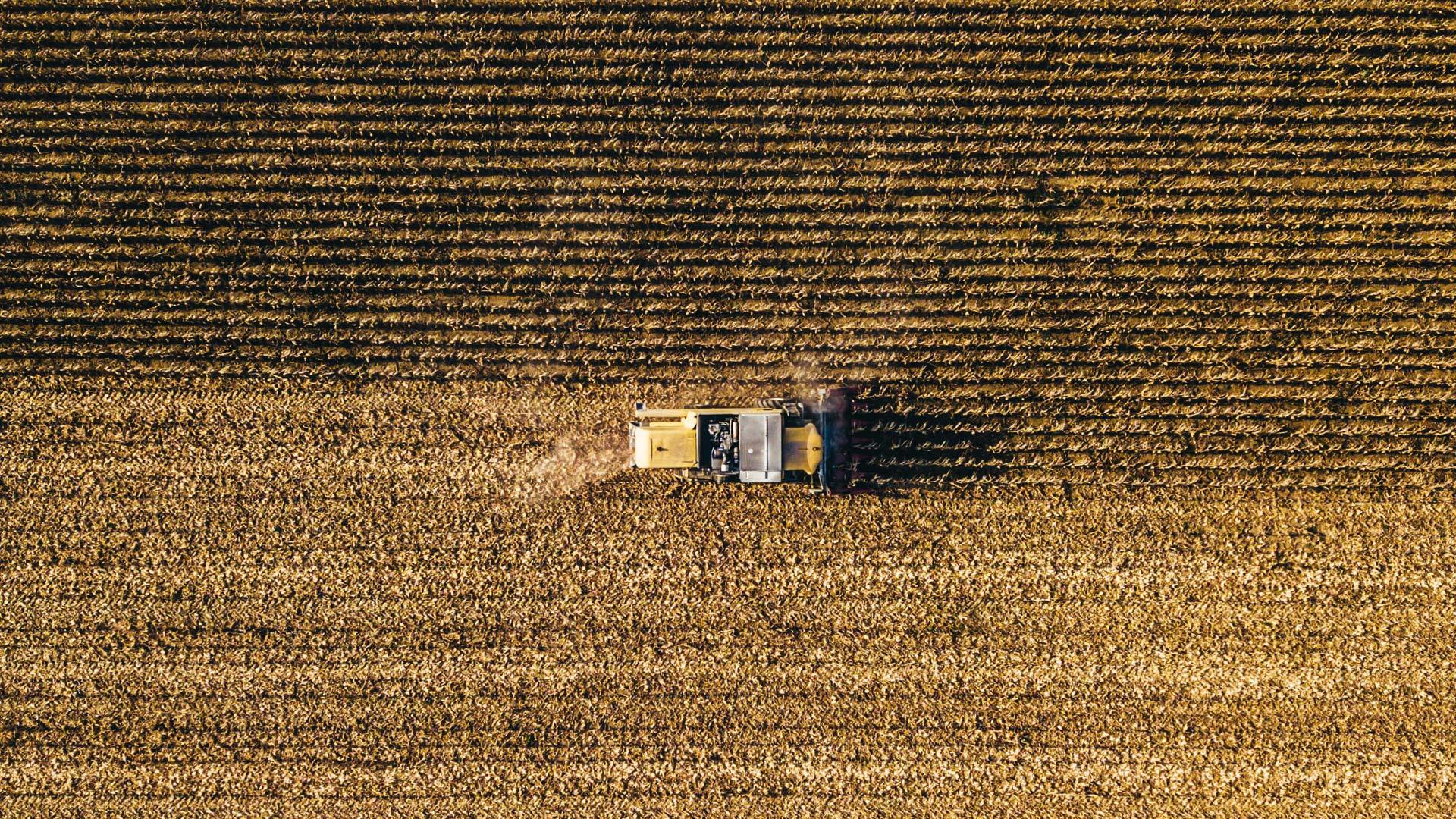 lokale landbouw