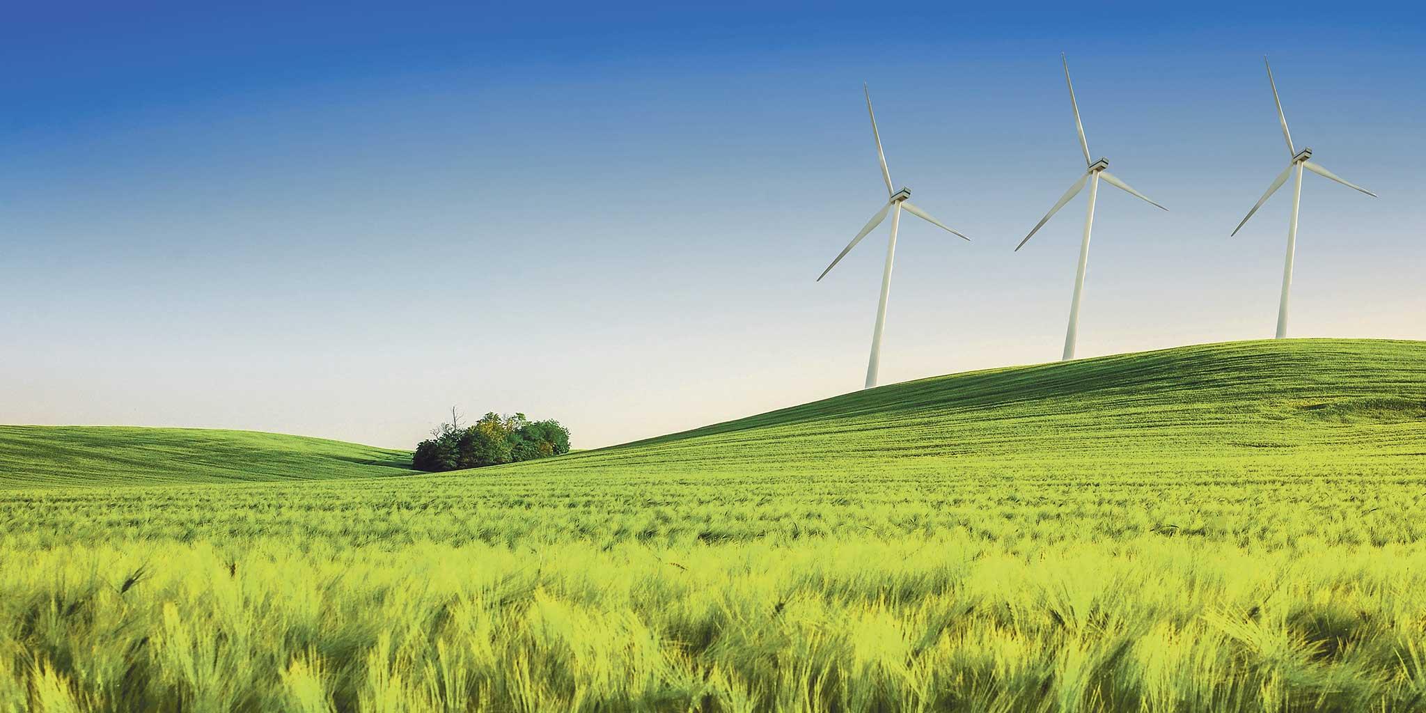 une prairie avec des moulins à vent