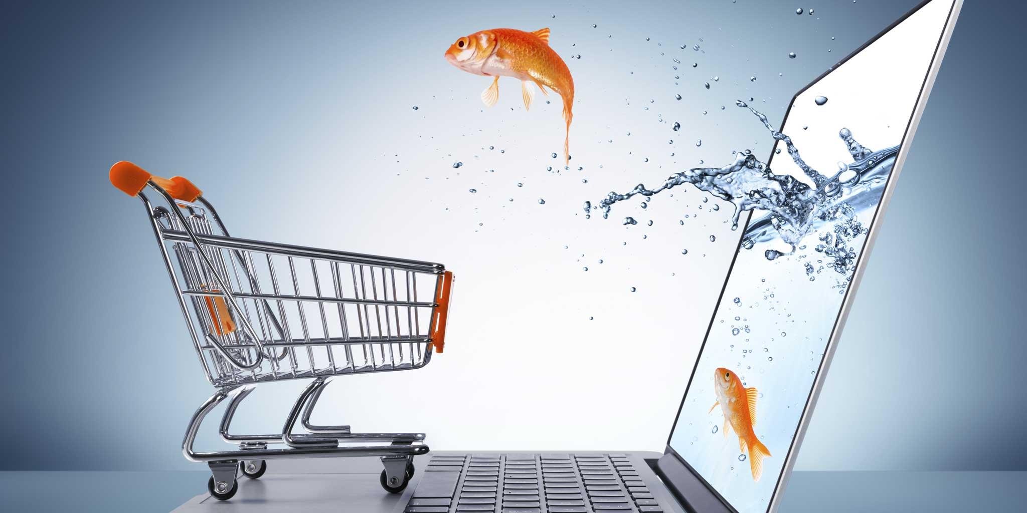 Vis komt uit de scherm en gaat in het winkelkarretje