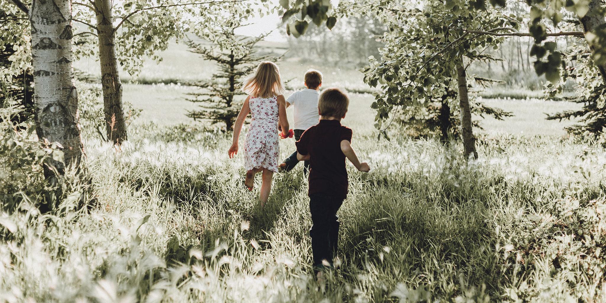 Enfants marchant dans la forêt