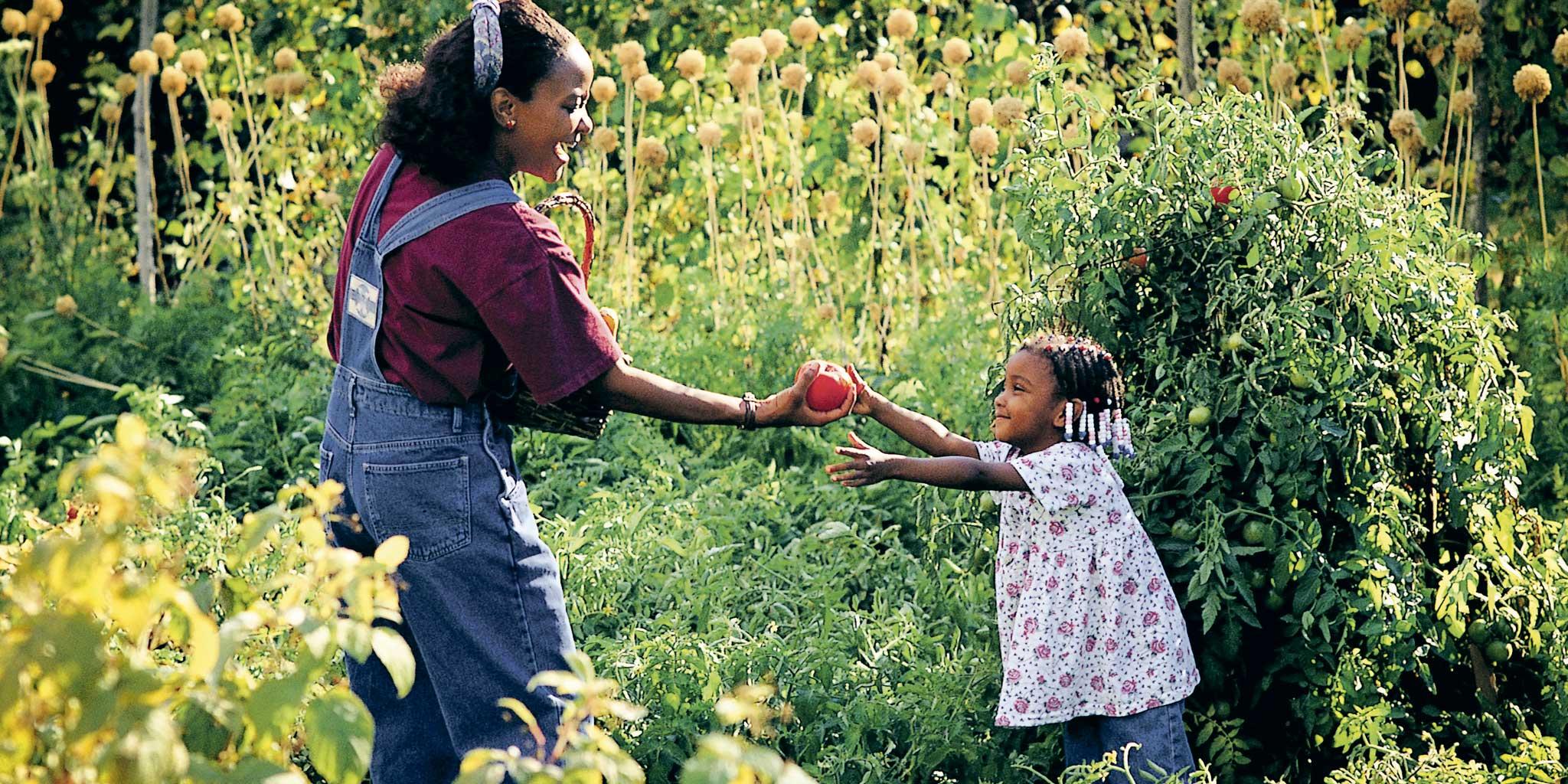 vrouw die een appel geeft aan haar dochter