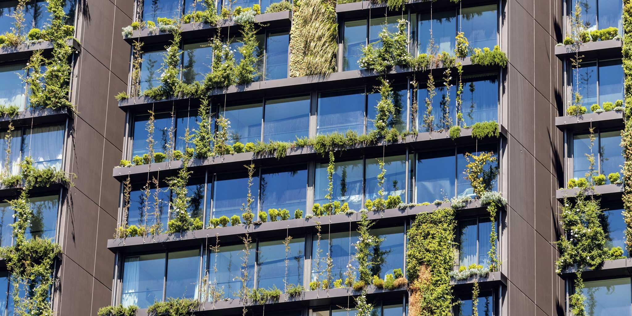 Appartementen met een groene wand