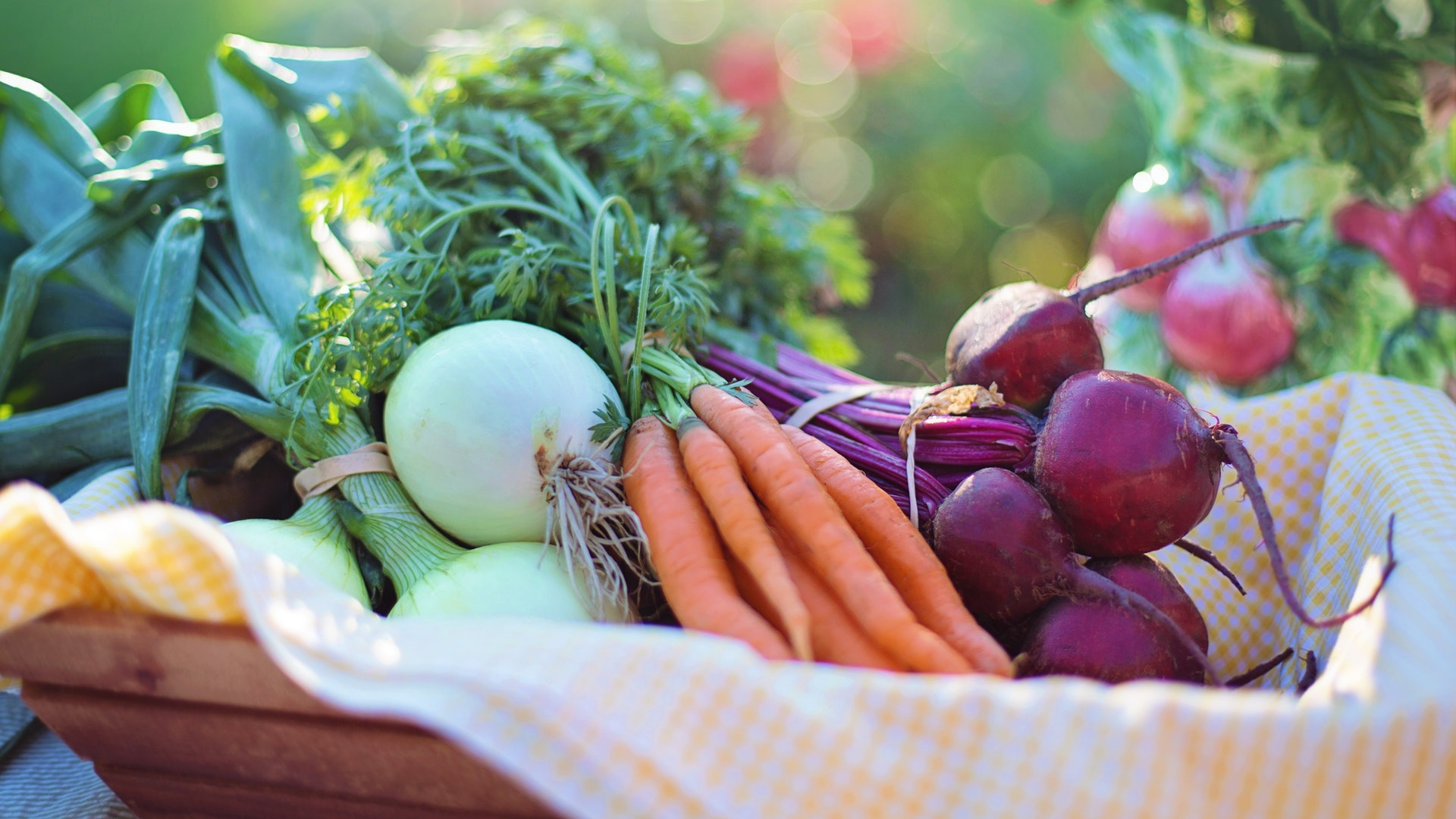 betteraves et carottes close-up