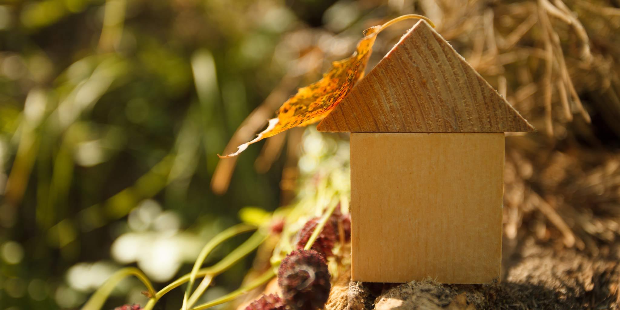 bio-ecologisch_bouwen