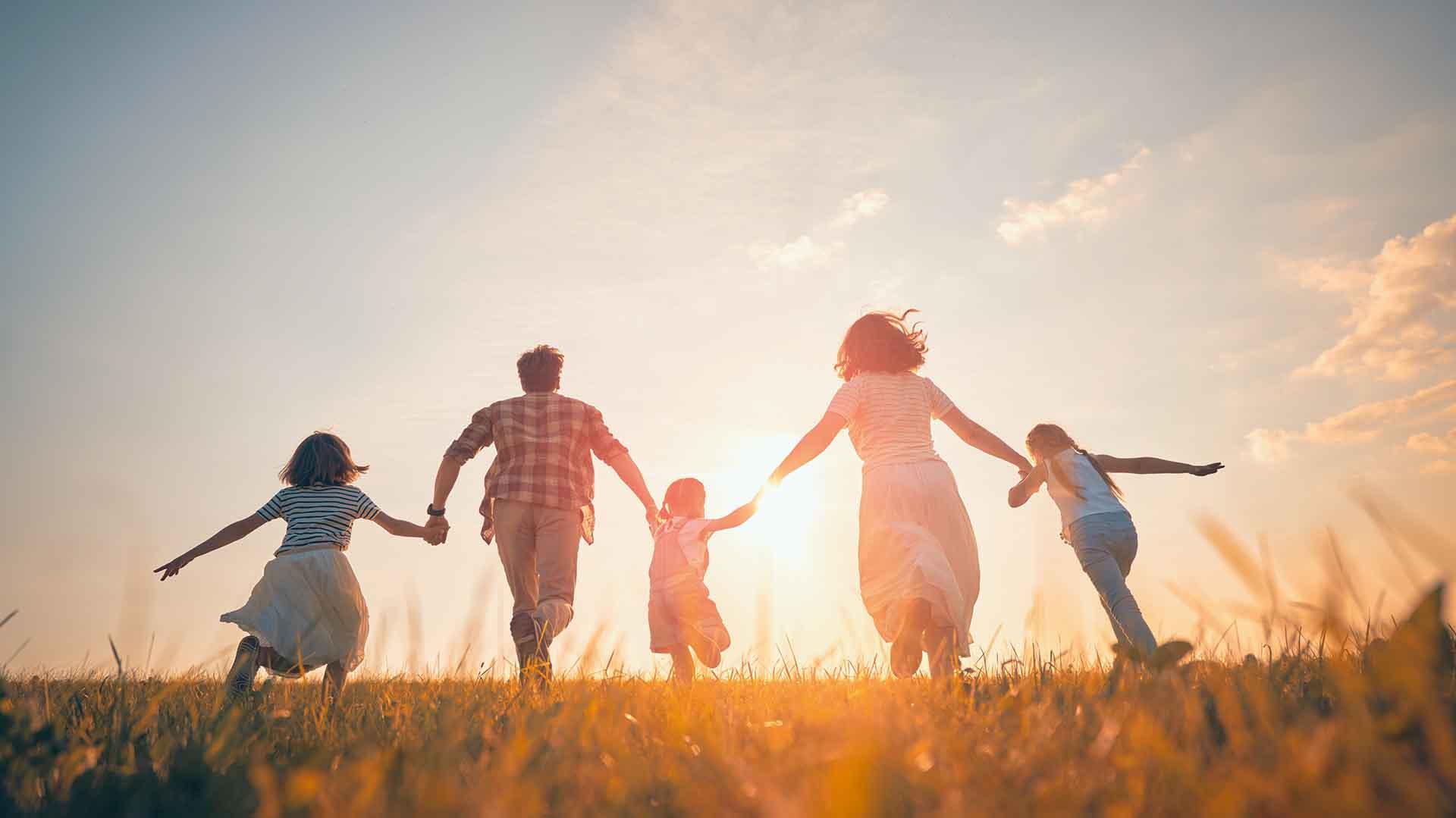 happy family field